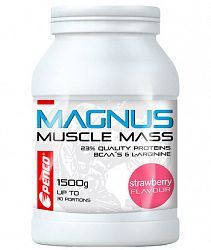 Gainer Penco Magnus 1500 g